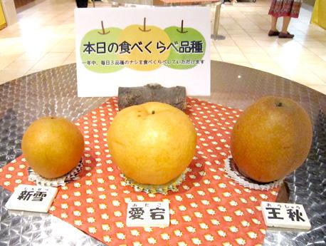 37honjitsuNashi.jpg